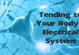 Tending to Your Body's Electrical System