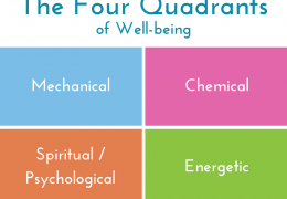 How Small Changes Make Big Shifts: The 4 Quadrants of Well-being